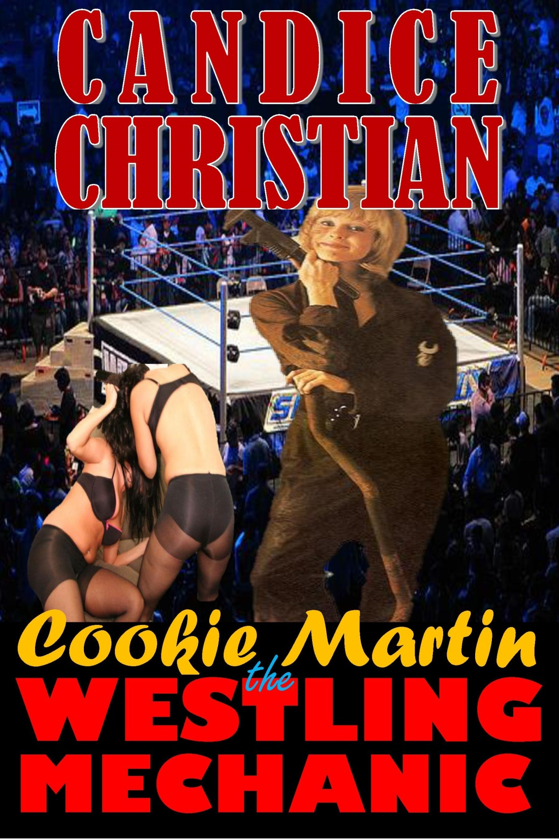 cookie martin wrestling mechanic vol 1