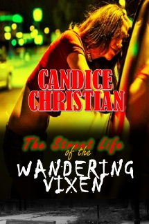 THe street life of the wandering vixen