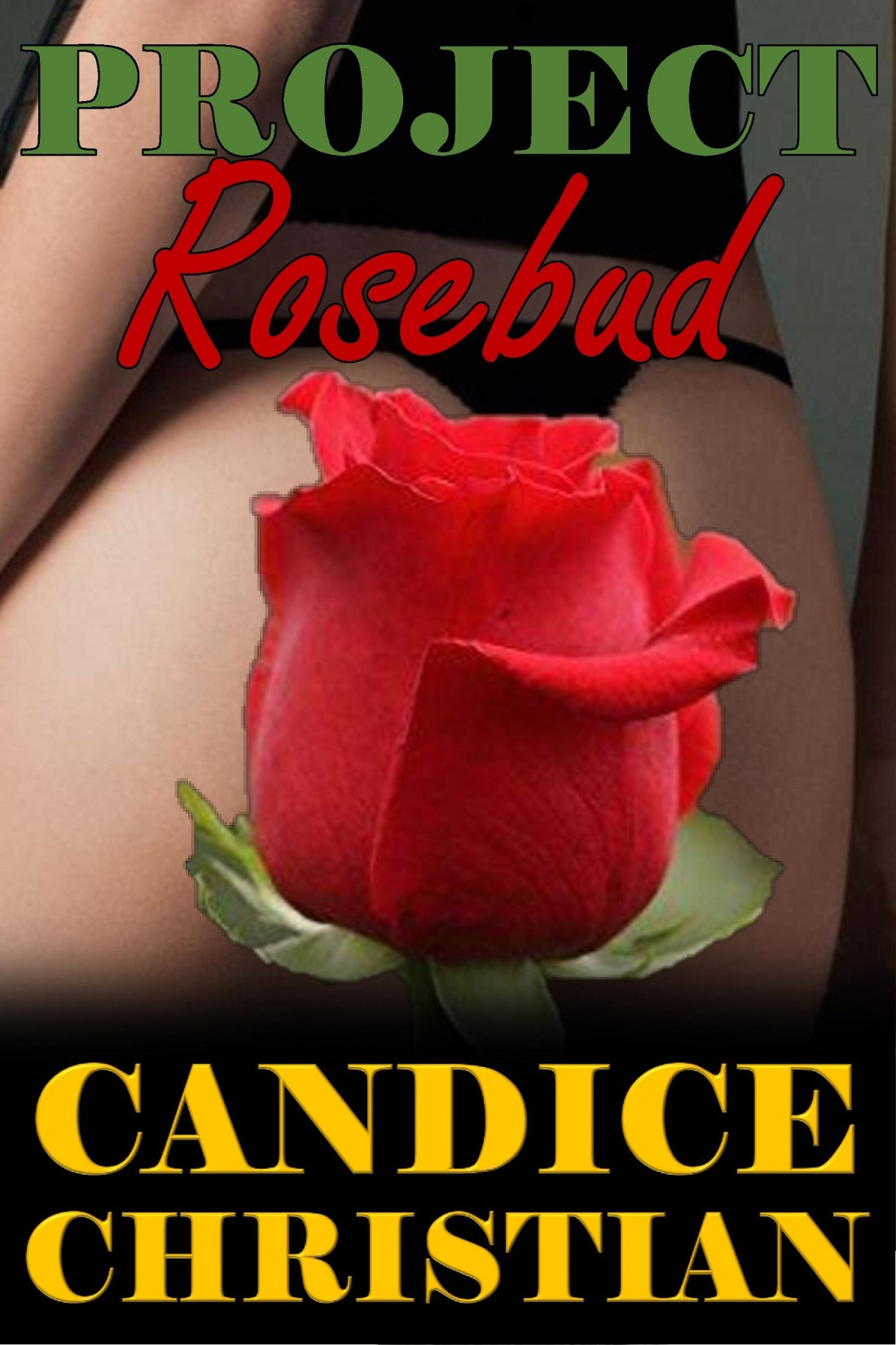 PROJECT ROSEBUD COVER-RESIZED