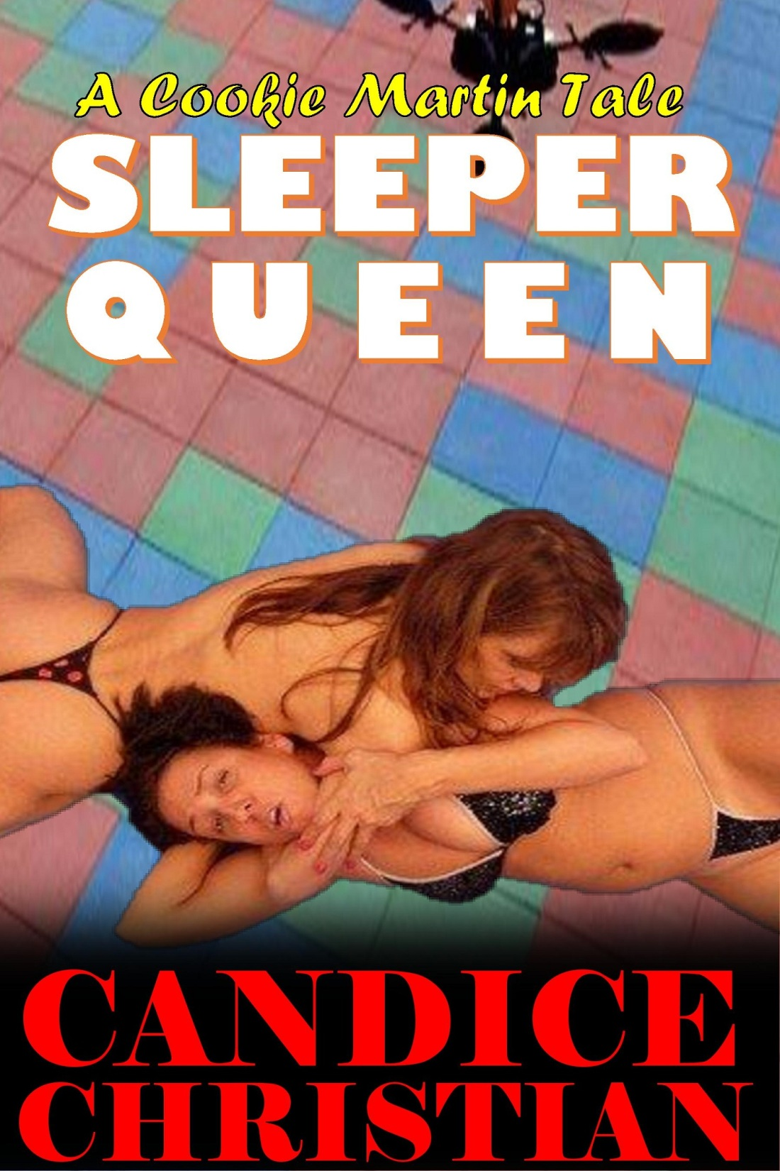 SLEEPER QUEEN COVER-RESIZED