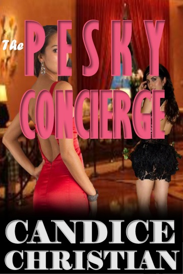 THE PESKY CONCIERGE COVER-RESIZED