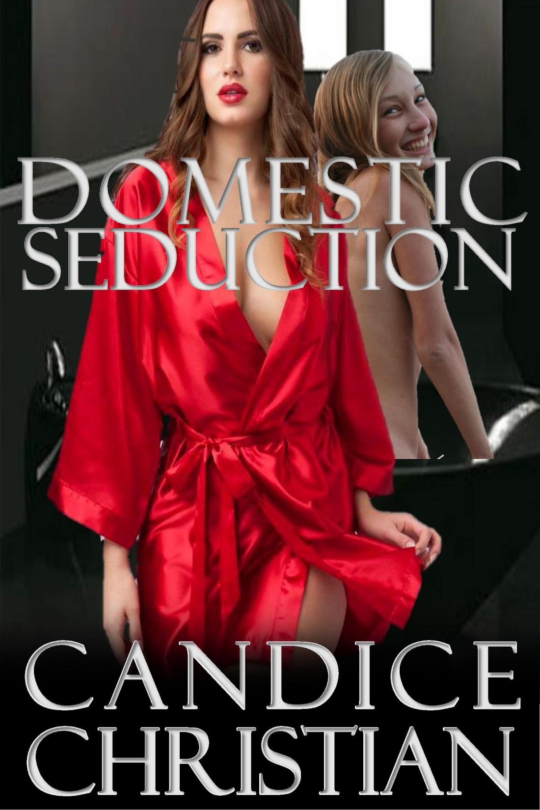 DOMESTIC SEDUCTION COVER-RESIZED