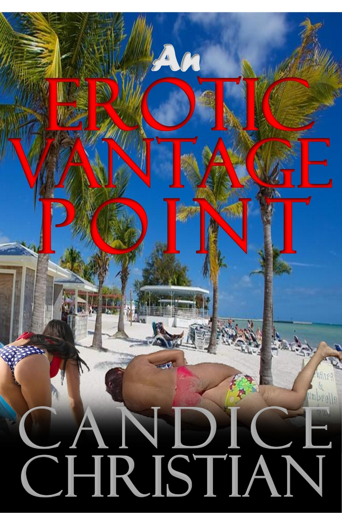 AN EROTIC VANTAGE POINT COVER-RESIZED